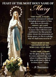 Catholic Prayers Daily, Prayers To Mary, Catholic Religion, Rosary Catholic, Catholic Art, Prayer Verses, Faith Prayer, Novenas Catholic, Rosary Mysteries