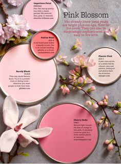 Painting your walls in pink? we have the best pink paint color schemes to choose from with paints from Benjamin Moore, Sherwin Williams and more!