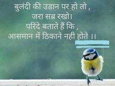 Birds Quotes In Hindi पक्षी पर सुविचार कोट्स उद्धरण Hindi Quotes Images, Hindi Quotes On Life, History Quotes, Real Life Quotes, Me Quotes, Qoutes, Motivational Movie Quotes, Inspirational Quotes, Motivational Thoughts