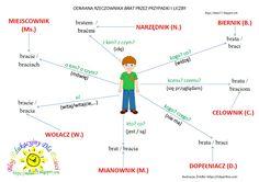 Aa School, Polish Language, Language Study, Mindfulness, Science, Teaching, Education, Truffles, Notes
