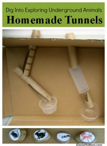 Reach into your recycling bin to find most of the supplies need for these science projects that create homemade tunnels for underground animals. Science Activities, Educational Activities, Science Experiments, Activities For Kids, Science Resources, Classroom Activities, Preschool Science, Science For Kids, Life Science