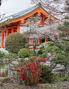 Walking Kyoto | A visit to Sanjusangendo Temple
