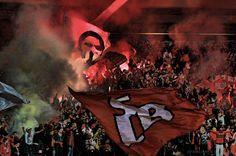 (315) Benfica - Busca do Twitter