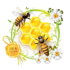 2 BEES.  DAISIES. FRESH HONEY IN THE HONEYCOMB. --Quality is  guaranteed. 100% pure & natural product.