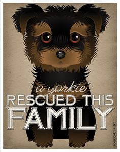 My Yorkie-loving friends need this!  A Yorkie Rescued This Family 11x14  Custom Dog by DogsIncorporated, $24.00