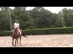 Canter. Adding the feeling of leg yields, shoulder ins for connection