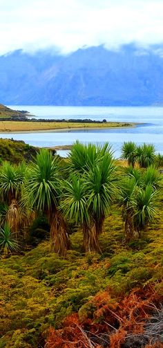 Lake Hawea, The South Island, Wanaka, New Zealand The Beautiful Country, Beautiful Places, Chatham Islands, Lake Wanaka, Kiwiana, New Zealand Travel, Adventure Tours, South Island, Heaven On Earth