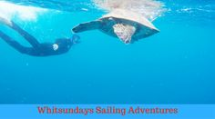 Do you want some adventure in your boring life? Then welcome to #SailingWhitsundays #Adventures.We are dedicated to offering you worlds best sailing adventures in the spectacular Whitsunday Islands of the #Great #Barrier #Reef Marine Park.