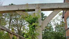 Hampshire, Arch, Frames, Outdoor Structures, Gardens, Frame, The Hampshire, Belt