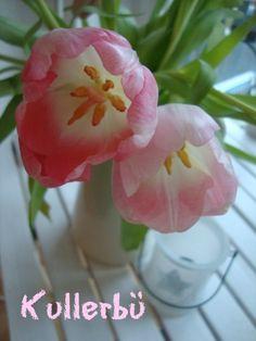 *Kullerbü*: Flower-Friday # 3