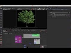 Nuke Quick Tip 007 Using Idistort and noise to create natural FX (Animated Tree wind) - YouTube