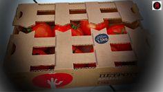 Ο Tετραγωνισμός του Κύκλου και το Branding της Τομάτας. H Περίπτωση της Wonderplant Α.Ε. ~ TROPOS Blog Branding, Advent Calendar, Gift Wrapping, Blog, Holiday Decor, Gifts, Business, Home Decor, Gift Wrapping Paper