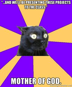 Anxiety Cat Meme- MY WORST NIGHTMARE! hate hate hate presenting in front of the class.