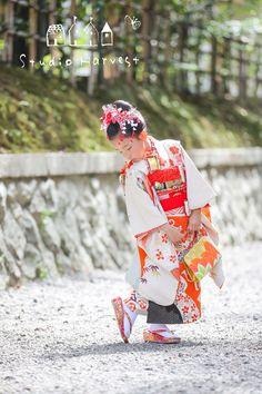 Japan Events, Harajuku, Kimono Japan, Rite Of Passage, Yukata, Color Photography, Photo Studio, Traditional Outfits, Children Photography