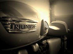 Triumph Thruxton aka Miss Marple, Year 2009