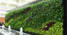 Bilderesultat for tropical wall planting