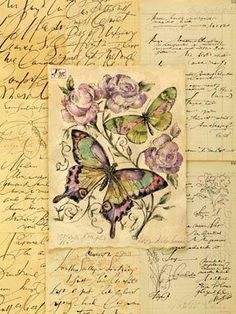 butterflies and script.