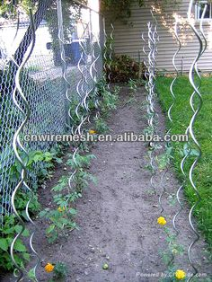 Imagen relacionada Tomato Stakes, Spiral, Outdoor Structures, Treehouses, Cool Stuff, Places, Gardens, Home, Crafts