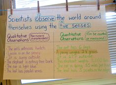 Mystery Bags to Develop Observation and Inference Skills. Here's an easy-to-teach science activity that builds science process skills in a playful context. Science Mystery Bags teaches students to use observations to develop inferences. (You can also easily connect it to literary inferencing as well, for a cross-curricular approach.)