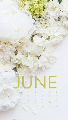 iPhone Wallpaper | June 2014 Ashlee Proffitt
