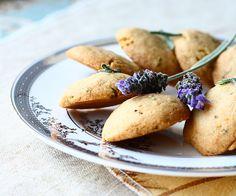 lavender-mint-cookies