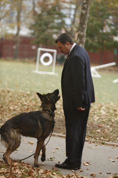 BLUE BLOODS - Man's Best Friend