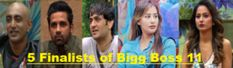 Five Finalists of Bigg Boss 11-Who got High Votes in Sunday Eviction? Luv Eliminated