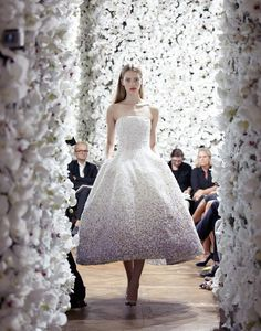 Carpet matches the drape at Dior Couture by Raf Simons
