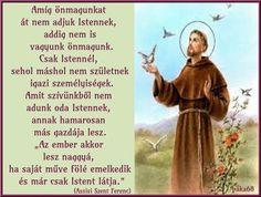 Don Gnocchi - A könyörületesség papja -II. Gnocchi, Bible, Humor, Memes, Cards, Tv, Biblia, Humour, Meme