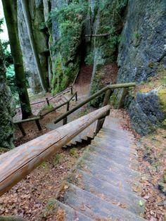 BuOLTL9 Joggingtour am 14.05.2016 - Erkundung einer Zusatzschleife für den Wiesenttaltrail - Film und Bilder von Thomas Schmidtkonz: http://laufspass.com/laufberichte/2016/buoltl9.htm