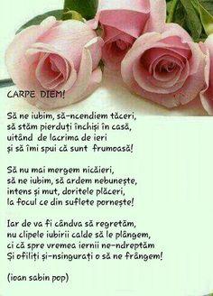 Love Poems, Carpe Diem, Rose, Flowers, Veronica, Characters, Literatura, Poems Of Love, Pink