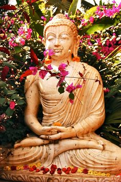 Buddha ~ To the mind that is still, the whole universe surrenders ~ Lao Tzu