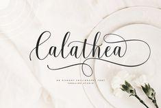 Calathea - Elegant Calligraphy Font by FadeLine Studio Handwritten Fonts, Calligraphy Fonts, All Fonts, Modern Calligraphy, Caligraphy, Calathea, Modern Fonts, Photoshop Illustrator, Premium Fonts