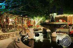 Boojum Tree's Hidden Gardens in Phoenix. Hidden Garden, Tree Wedding, Photo Tree, Digital Photography, Phoenix, Photo Galleries, Table Settings, Gardens, Table Decorations