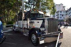 truck peterbilt 1981