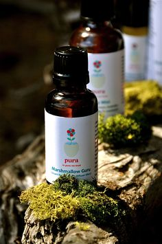 Pura's Marshmallow Guru is a sweet, sensual diffuser and bath oil blend. Wee ones love it in their bubble bath. Made with vanilla and cocoa absolute essential oils. All natural botanical tincture.    www.purabotancals.com