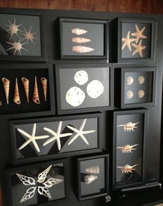 Classy shell artwork for the walls. These were easy to  make - purchased an assortment of black shadow boxes in different sizes from Michael's Crafts, added black felt to some that needed dark backing, and then hot glued in sea shells that were both purchased and found on our travels. Can't wait to hang them :)