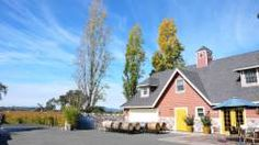 Harvest Moon Winery, on Olivet in the Russian River Valley
