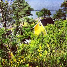 Help vote my picture as Instacanvas photo of the week - Bleikøya, Oslofjord, Norway