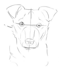 how to draw a dog head 3