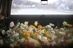 Flowers in transit. | Image via: Amy Merrick