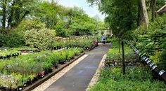 Garden Centre At Hampshire For Sale