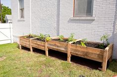 Pallets to planters. Im loving the pallet creations so much that I had to create a folder to planters. Im loving the pallet creations so much that I had to create a folder. Garden Boxes, Garden Planters, Balcony Gardening, Potager Palettes, Pallets Garden, Pallet Garden Box, Pallet Gardening, Raised Garden Beds, Raised Beds