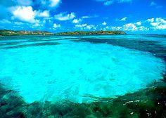 Near Fort-de-France, Martinique Barbados, Jamaica, Vacation Destinations, Dream Vacations, Vacation Spots, Vacation Ideas, Bequia, Bora Bora, Oh The Places You'll Go