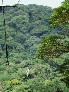 (So this is not me in the pic, but I have done this here and it was amazing!) Zip lining the rain forest in Costa Rica