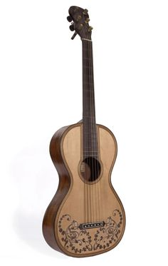 The six-string guitar—made in Pisa, Italy, by Ferdinando Bottari in 1815 or 1816—is in generally good condition, though not in playing order.