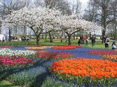 beautiful flower garden in the Holland Most Beautiful Gardens, Beautiful Flowers Garden, Love Garden, Dream Garden, Garden Art, Beautiful Places, Amazing Gardens, Netherlands Tourism, Haarlem Netherlands