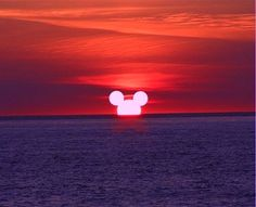 """""""I only hope that we don't lose sight of one thing - that it was all started by a mouse."""" ~ Walt Disney"""