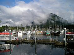Great blog about Sitka! Sitka Alaska, Alaska Travel, Pacific Ocean, Small Towns, Travel Guide, North America, Attraction, Vacations, Cruise