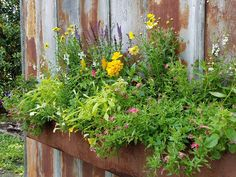 Beautiful planters on our doors